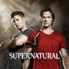 Supernatural, Season 6 wiki, synopsis