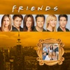 Friends, Season 9 wiki, synopsis