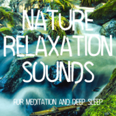 Nature Relaxation Sounds (For Meditation and Deep Sleep)