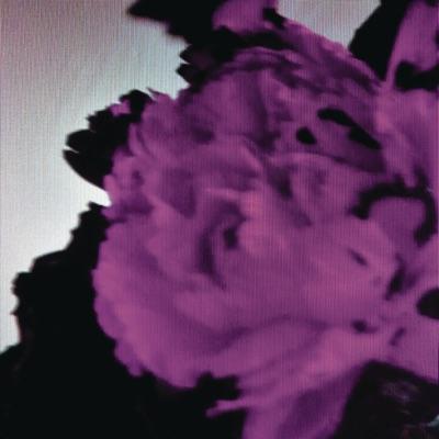 All of Me (Tiësto's Birthday Treatment Remix) [Radio Edit] - Single - John Legend