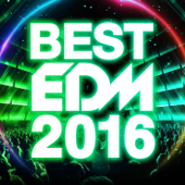 BEST EDM 2016