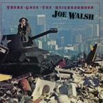 Joe Walsh - A Life of Illusion