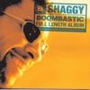 Boombastic, Shaggy