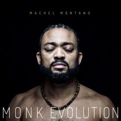 Monk Evolution