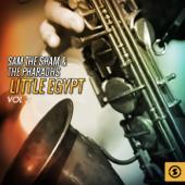 Download Lagu MP3 Sam the Sham & The Pharaohs - Li'l Red Riding Hood