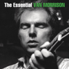 Brown Eyed Girl - Van Morrison