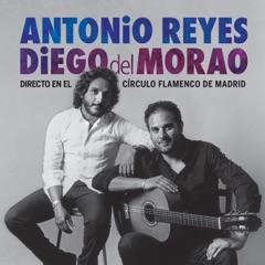Directo en el Círculo Flamenco de Madrid (En Directo)