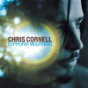 Euphoria Mourning, Chris Cornell
