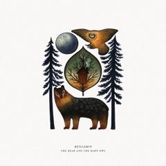 The Bear and the Barn Owl
