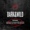 DARK & WILD ジャケット写真