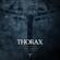 Dark Angel - Thorax