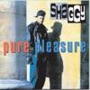 Pure Pleasure, Shaggy