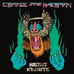 Hiatus Kaiyote - Molasses