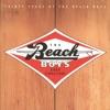 Good Vibrations: Thirty Years of The Beach Boys, The Beach Boys