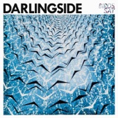 Darlingside - She's All Around