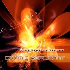 Pulsar Activity