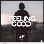 Feeling Good - Avicii