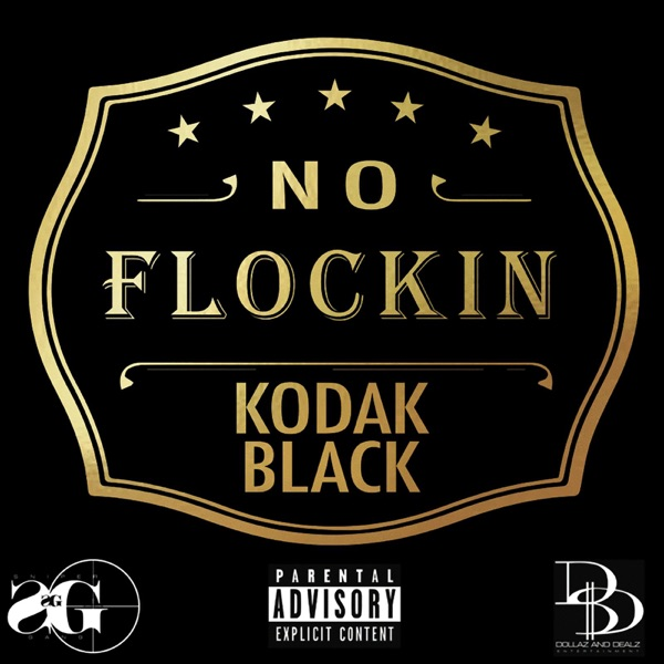 Kodak Black - No Flockin song lyrics