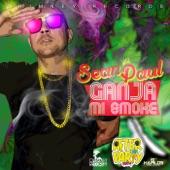 Ganja Mi Smoke - Single