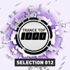 Trance Top 1000 Selection, Vol. 12
