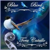 Blue Bird (Naruto) [feat. Tsuko G.] - Tera Catallo