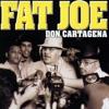 Fat Joe - Don Cartagena Album
