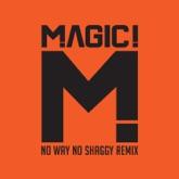 No Way No (feat. Shaggy) [Native Wayne Jobson and Barry O'Hare Remix] - Single