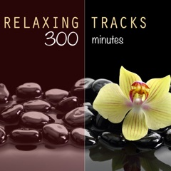 Relaxing Tracks (300 Minutes) - For Meditation, Relaxation, Reiki, Yoga, Massage, Spa Therapy and Deep Sleep