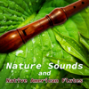 Native American Music Consort - Nature Sounds and Native American Flutes – Relaxing Sounds of Water, Rain, Birds Singing for Massage, Yoga Classes, Spas & Wellness, Deep Sleep  artwork