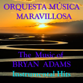 The Music Of Brian Adams Instrumental Hits