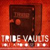 Various Artists - Tribe Vaults, Vol. 1 (Afro House Edition) artwork