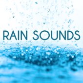 Rain Sounds-Deep Sleep & Nature Sounds