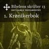 KABB - 1. Krønikerbok (Bibel2011 - Bibelens skrifter 13 - Det Gamle Testamentet) artwork