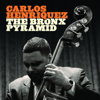 Carlos Henriquez - The Bronx Pyramid  artwork