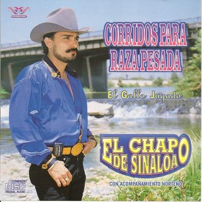 Corrido para la Raza Pesada - El Chapo De Sinaloa