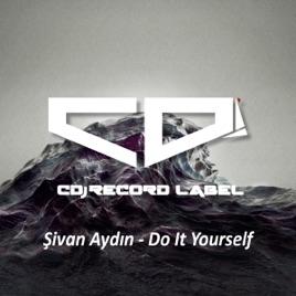 Do it yourself single by sivan aydin on apple music do it yourself single solutioingenieria Choice Image