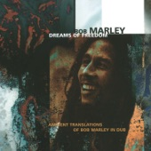 Bob Marley & The Wailers - So Much Trouble In The World