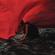 Aimer Brave Shine - Aimer