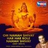 Om Namah Shivay Har Har Bole Namah Shivay Shiv Dhun