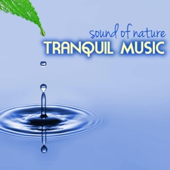 Tranquil Music - Sound of Nature Relaxation Soundscapes