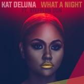 What a Night (feat. Jeremih & Stefflon Don) [Remix] - Single