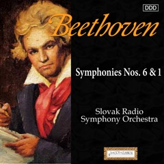 Symphony No. 1 in C Major, Op. 21: IV. Adagio - Allegro molto e vivace