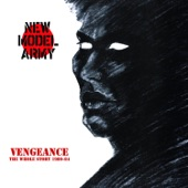 New Model Army - Great Expectations