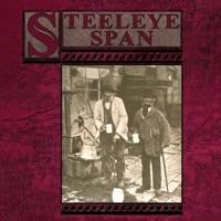 Ten Man Mop or Mr Reservoir Butler Rides Again by Steeleye Span on Apple Music