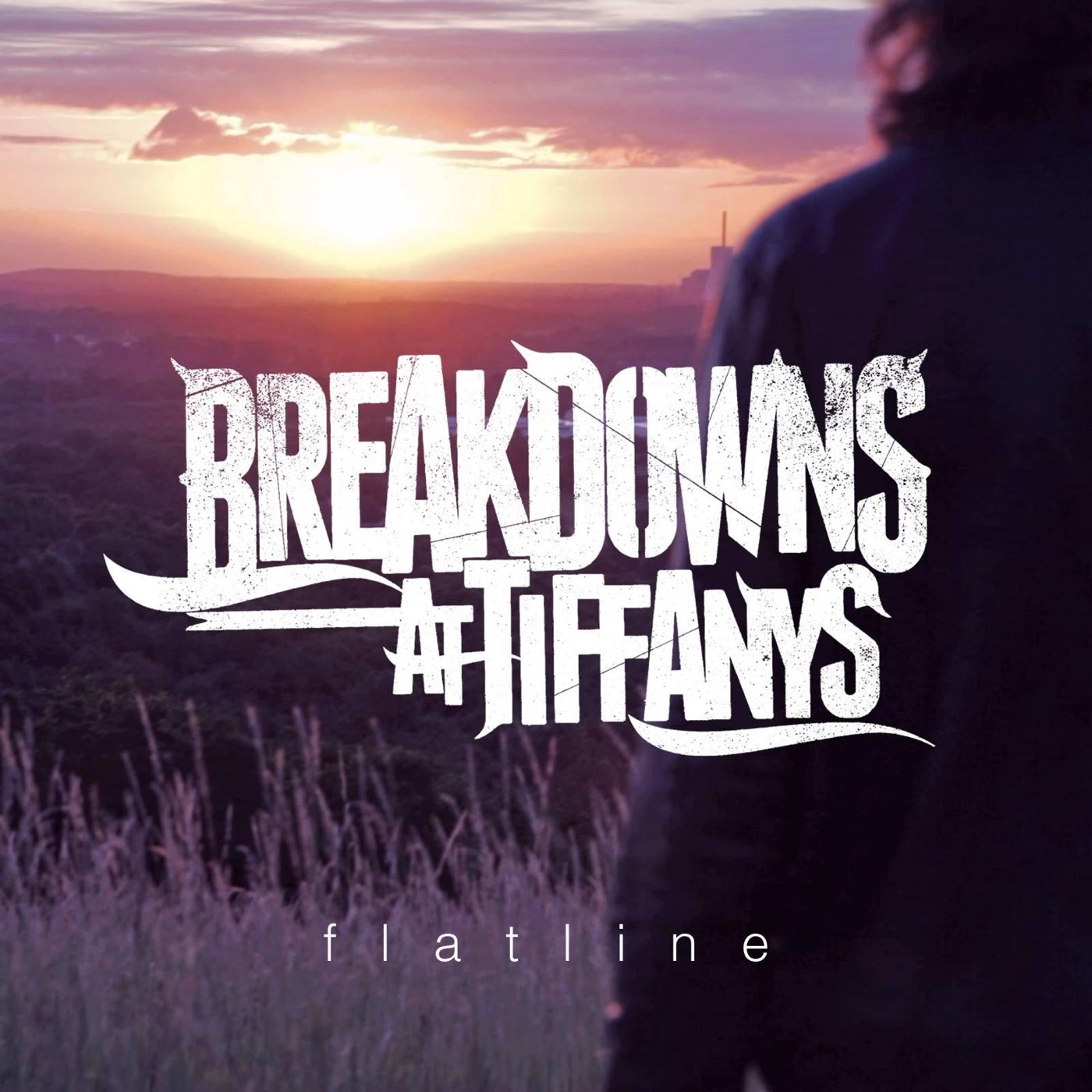 Breakdowns At Tiffany's - Flatline [single] (2013)