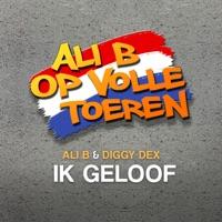Do it yourself van diggy dex op apple music diggy dex single solutioingenieria Image collections