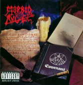 MORBID ANGEL - Rapture || 6920 || S