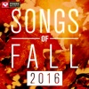 Songs of Fall 2016 (60 Min Non-Stop Workout Mix 135-140 BPM) ジャケット写真