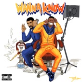 Wanna Know Remix (feat. Drake) - Single