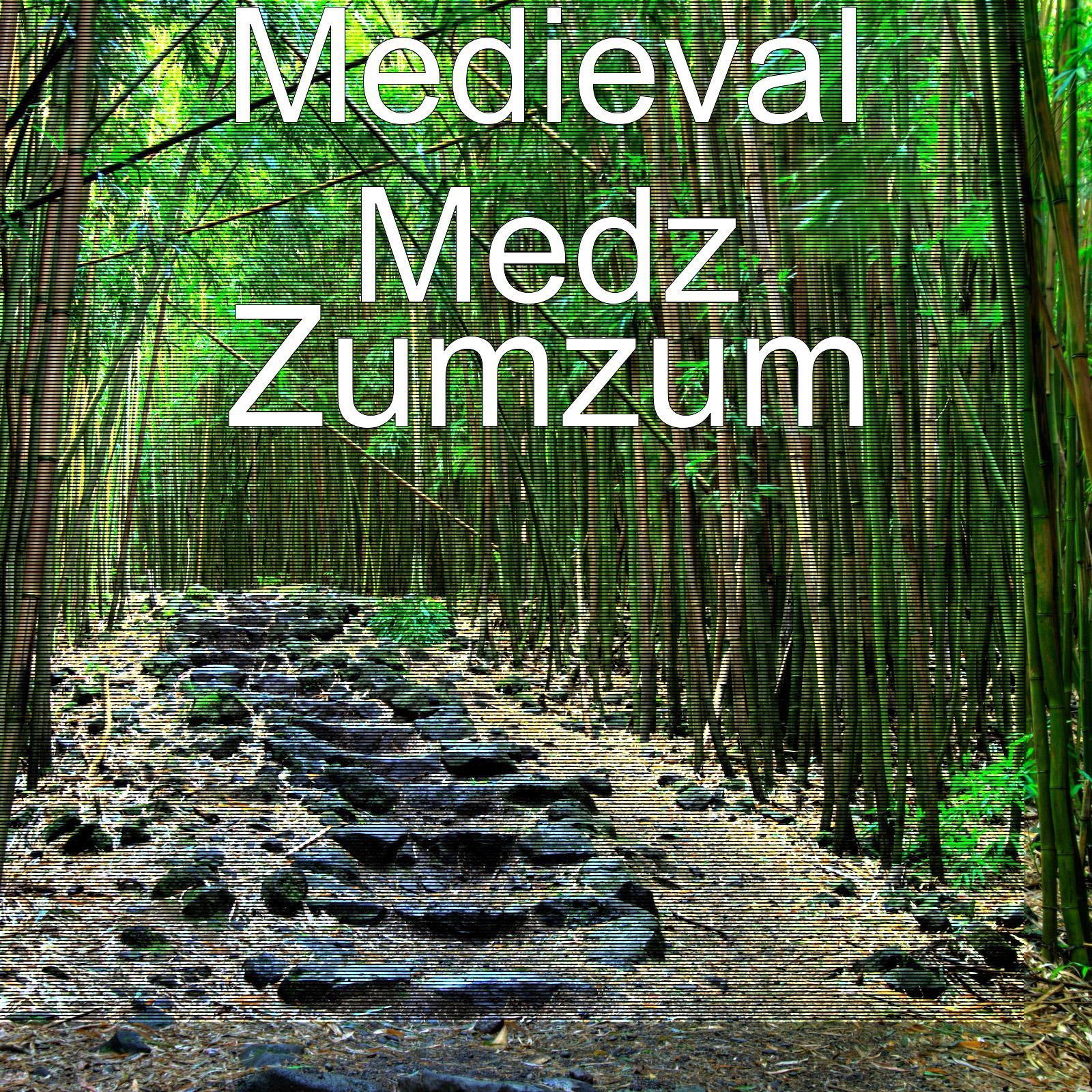 Zumzum - Single